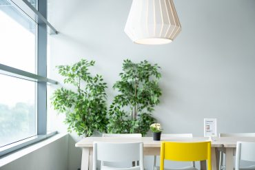Ikea Table Dining Chair Lamp Plant Natural